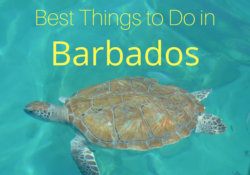 8 Best Things to Do in Barbados