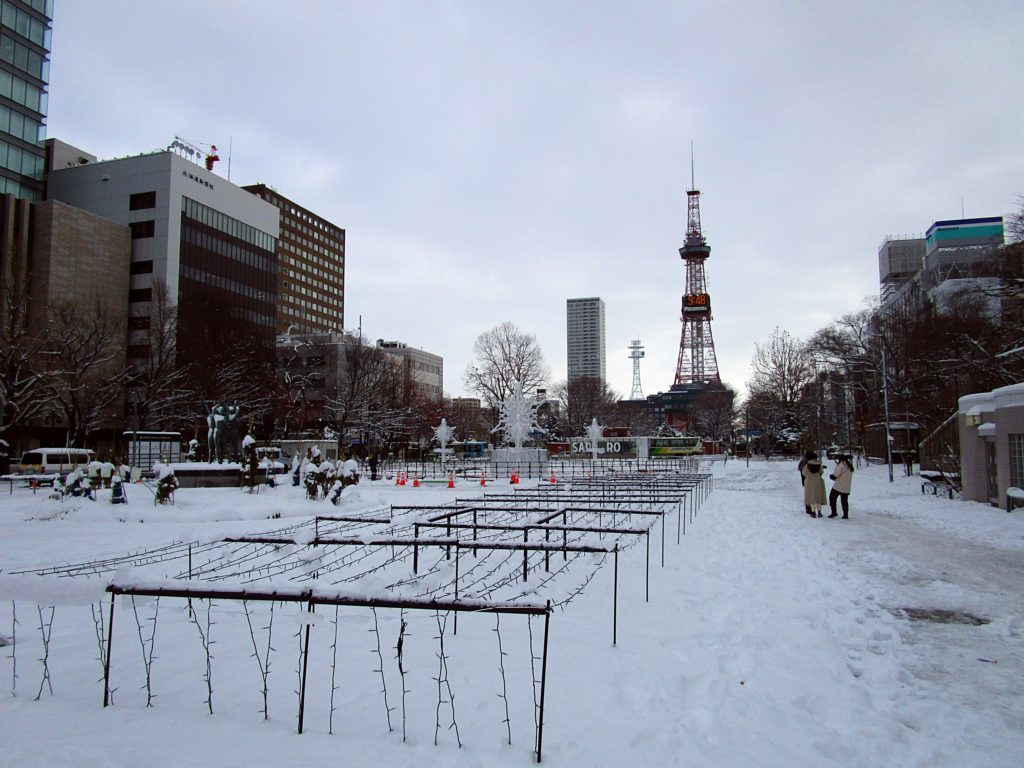 Sapporo Winter Travel Guide