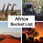 Africa Bucket List: 50 Incredible Things to Do and Places to Visit in Africa