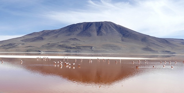 Laguna Colorada best places to visit in bolivia