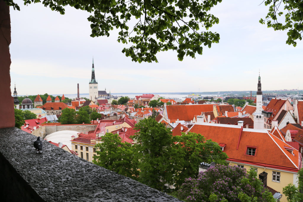 fairytale city of Tallinn