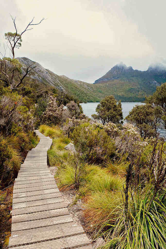 Cradle Mountain travel guide