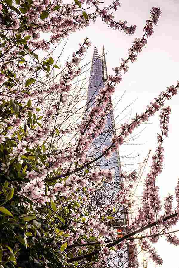 The Shard is one of the top London photography spots