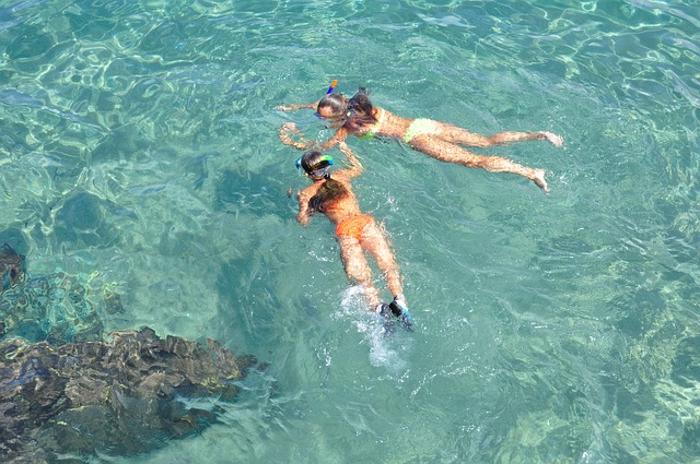 Best Snorkeling Destinations in Florida