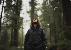 bearded man traveling