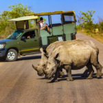 A trip down to the parks of South Africa
