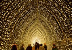 Sparkling tunnel of light at Lightscape Chicago Botanic Garden