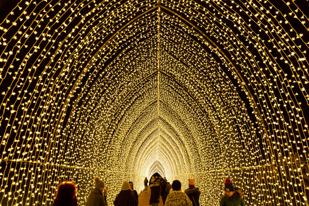 Best Places to See Christmas and Holiday Lights Around Chicago This Year | The Savvy Globetrotter
