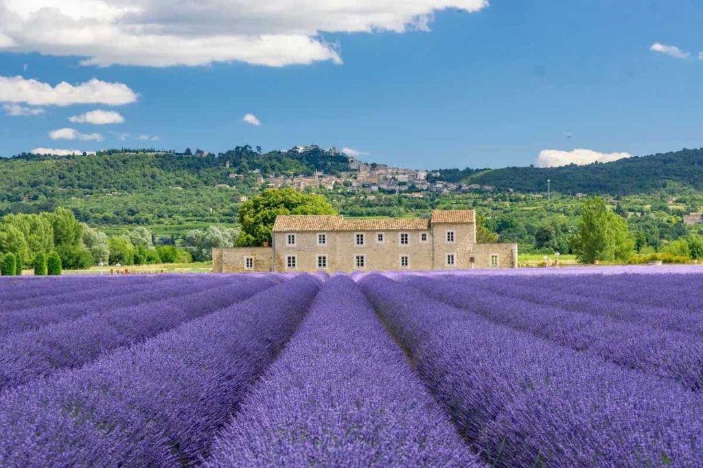 Provence road trip