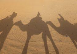 best Morocco experiences